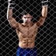 Mixed martial artist posed behind chain link — Stock Photo