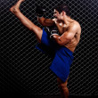 Mixed martial artist posed in front of chain link — Stock Photo #6533429