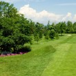 A long golf course fairway on a beautiful summer day. — Stock Photo #6538382