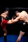 Mixed martial artists fighting - kicking — Stock Photo