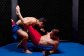 Mixed martial artists fighting — Stock Photo