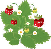 Strawberry with red and green dice, with flowers — Stock Vector