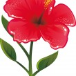 Shiny flower — Stock Vector