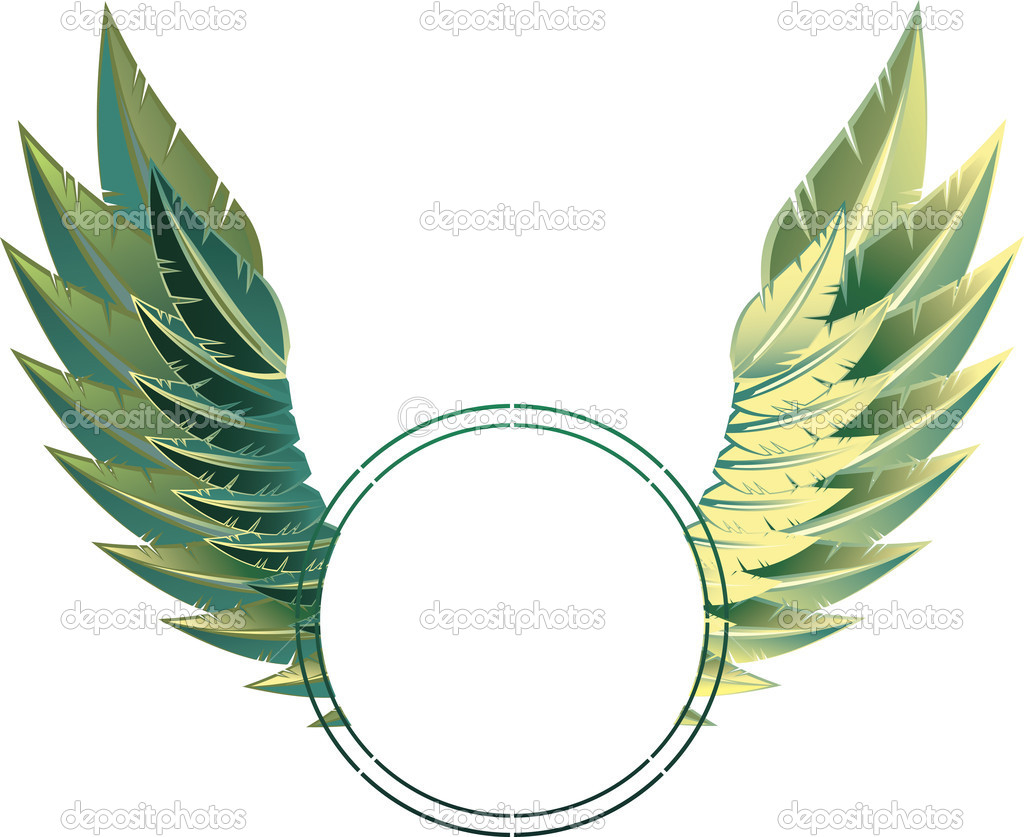 Eagle wings frame — Stock Vector #6558959