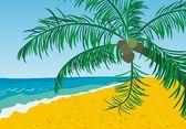 かわいい夏の背景 — ストックベクタ