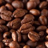 Grains de café. — Photo