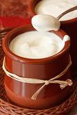 Homemade yogurt. — Stock Photo