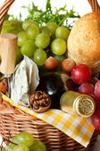 Ingredients for good picnic. — Stock Photo
