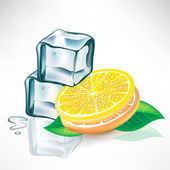 Two ice cubes and lemon slices with mint — Vetor de Stock
