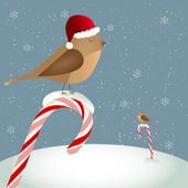 Birds sitting on candy cane — Vector de stock