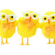 Easter geek chicks — Stock Photo