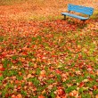 Bench park autumn leaves — Stock Photo