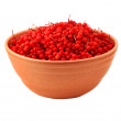 Bowl of freshly picked cranberries — Stock Photo
