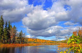 Autumn forest lake — Stock Photo