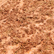 Closeup muddy grass — 图库照片 #6601633