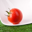 Fresh tomatoes with green leaf - Stock Photo
