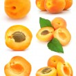 Collection of fresh apricot fruits isolated — Stock Photo
