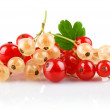 Currant berries with green leaf — Stock Photo