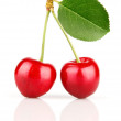 Fresh cherry fruits with green leaves — Stock Photo