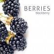 Stock Photo: Berry blackberry with green leaf