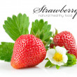 Strawberry berry with green leaf and flower — Stock Photo #6598591