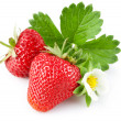 Strawberry berry with green leaf and flower — Stock Photo #6598636