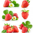 Set strawberry berry with green leaf and flower - Stockfoto