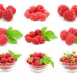 Ripe raspberry - Stock Photo