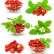 Collection of red strawberry fruits with green leafs isolated — Stock Photo