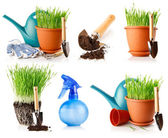 Set of green grass in the pot with shovel tool and ground — Stock Photo