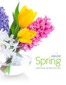 Spring flowers in glass vase — Stock Photo