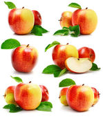 Set red apple fruits with cut and green leaves — Stock Photo