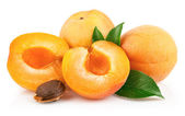 Apricot fruits with green leaf — Stock Photo