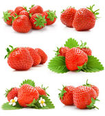 Set of red strawberry fruits with green leaves — Stock Photo