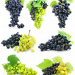 Collection of ripe fruit grape cluster isolated — Stock Photo #6601467