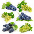 Set fresh grape fruits with green leaves — Stock Photo