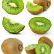 Collection of fresh kiwi fruits isolated — Stock Photo