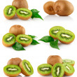 Set fresh kiwi fruits with green leaves — Stock Photo #6602908