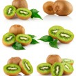 Set fresh kiwi fruits with green leaves - Stock Photo