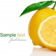 Stock Photo: Fresh lemons with cut and green leaves