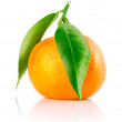 Fresh tangerine fruit with green leaves isolated - Stock Photo