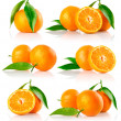 Set of fresh mandarine fruits with cut and green leaves — Stock Photo #6603167