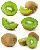 Collection of fresh kiwi fruits isolated — Stock Photo