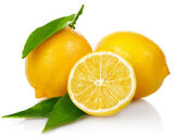 Fresh lemons with cut and green leaves — Stock Photo