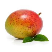 新鲜芒果果实与绿色枫叶孤立 — 图库照片