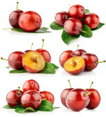 Set fresh plum fruits with cut and green leaves — Stock Photo