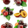 Stock Photo: Collection of plum fruits with green leafs isolated