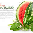 Juicy watermelon in cut with green leaf — Stock Photo