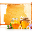 Sweet honey in glass jars and honeycomb with flowers — Stock Photo