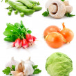 Stock Photo: Set of fresh vegetables with green leaf